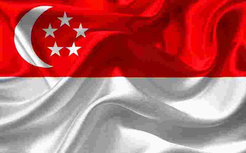 シンガポールから日本へ送金はペイパルかシティバンク?どちらがいい?